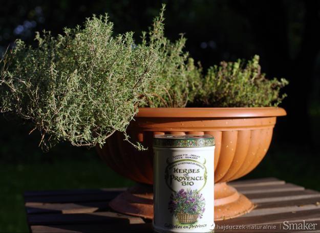 Soupe au pistou – prowansalska zupa warzywna z bazylią