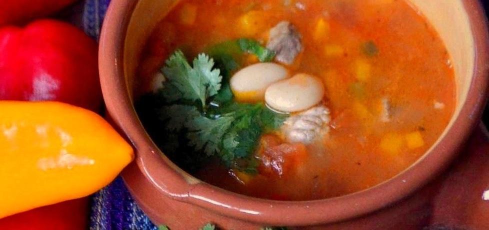 Meksykańska zupa fasolowa z wieprzowiną (autor: leonowie ...