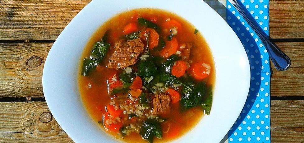 Zupa ze szpinakiem i wołowiną (autor: igraszkilosu ...