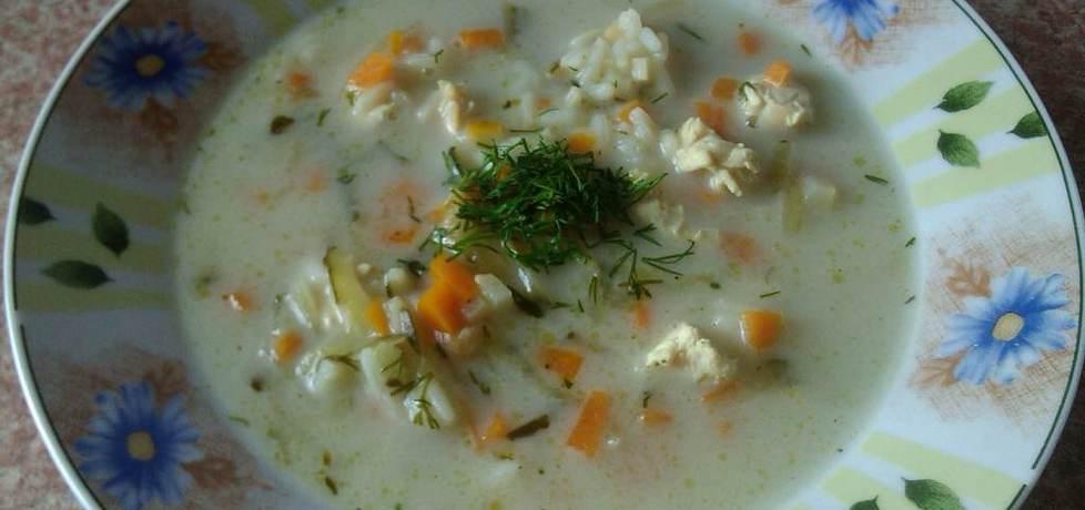 Zupa ryżowa z ogórkiem konserwowym (autor: konczi ...
