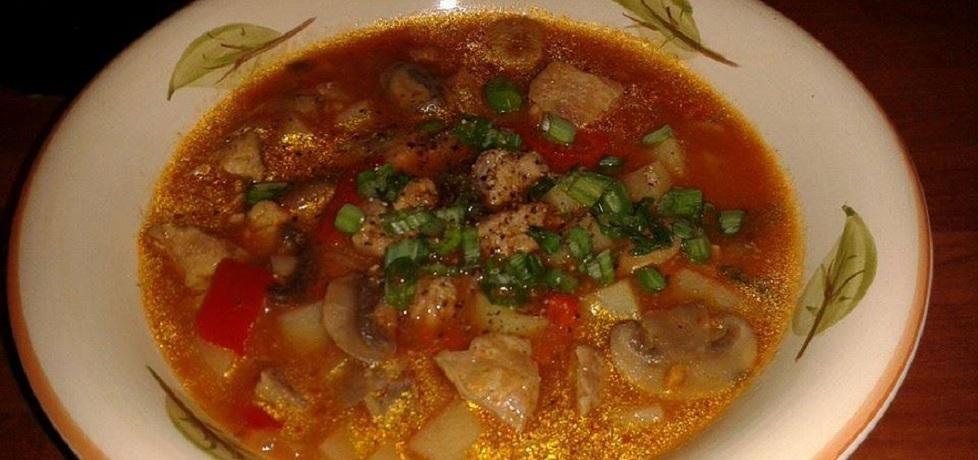 Zupa gulaszowa z indyka (autor: kasiaaaaa)