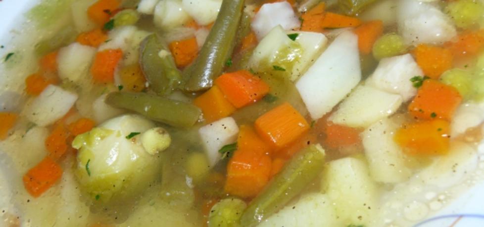 Zupa jarzynowa (autor: pioge7)