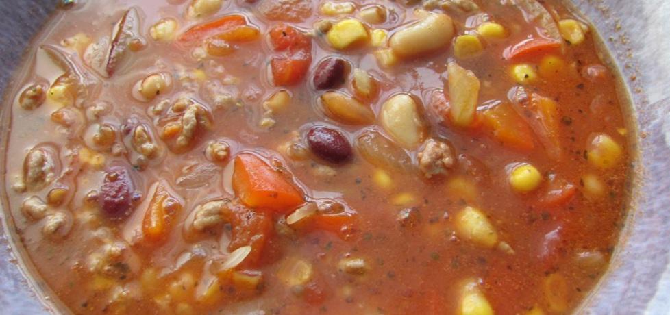 Zupa meksykańska. (autor: olgask)