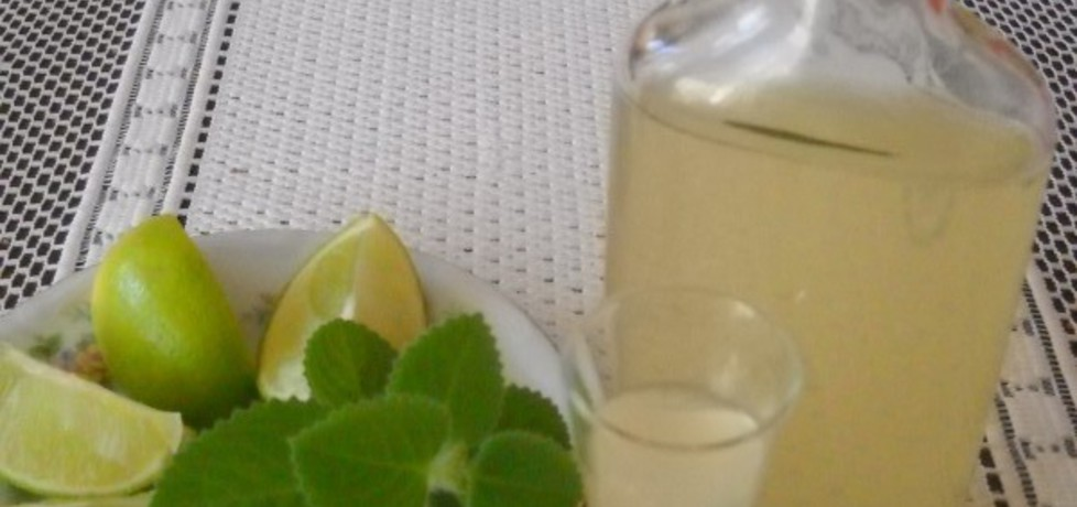 Nalewka z limonki, mięty i bazylii (autor: bernadeta1 ...