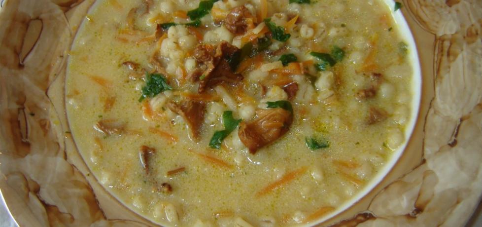 Zupa z suszonych kurek (autor: katarzyna40)