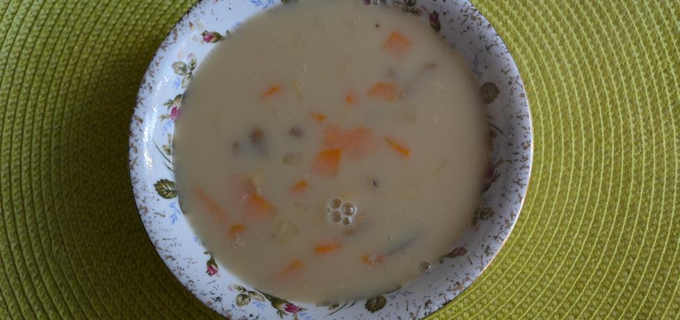Zupa grzybowa z grysikiem i śmietaną (autor: wafelek2601 ...