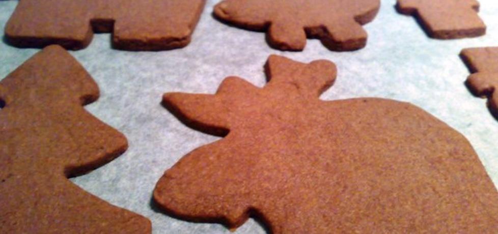 Kruche ciasteczka korzenne (autor: panimisiowa)